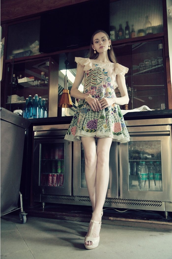 House Story Embroidered Dress